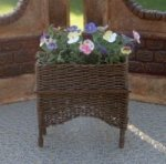 Pansies in Wicker Plant Stand
