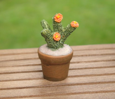 Cactus w/ Orange Flowers